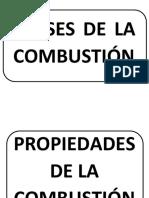 COMBUSTIÓN.pdf