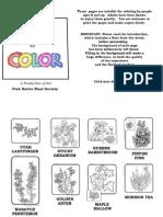Coloring Book 1 of Utah Native Plants