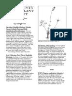 December 2004 Manzanita Native Plant Society Newsletter