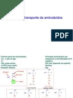 Aminoácidos-Reações de Transaminação GSH