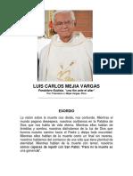 Luis Carlos Mejia Vargas