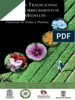 Medicina tradicional en los corregimientos de Medellin.pdf