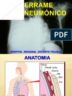 derrameparaneumonico-120105152332-phpapp01