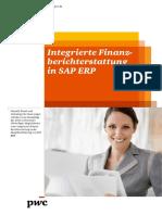 41458 Wp Integrierte Finanzberichterstattung 140717