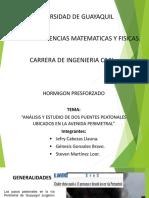 Puente Peatonal Cdla Los Cebos y Puente Peatonal Hospital Universitario