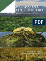 Escarabajos Del Estado de Guerrero Completo Optimizado