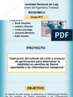 GRUPO-N3 (1).pptx