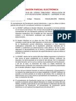 Fiscalización Parcial Electrónica