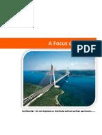 A Focus on Turkey.docx