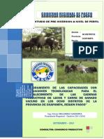 Estudio de Pre-Inversión, Vacunos Oxapampa - Gobierno Regional Pasco