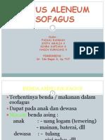 Corpal Esophagus