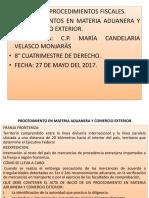 PROCEDIMIENTO EN MATERIA ADUANERA Y COMERCIO EXTERIOR.pptx