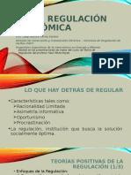 LSerna_Regulación Económica