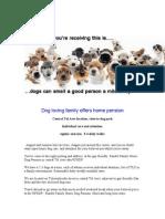 Dog Pension GF Post Jondon