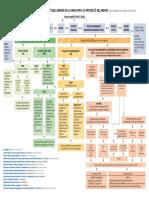 Procediment General Intervencio Simplificat