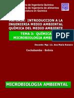 Tema_3_Microbiologia_ambiental.ppt;filename_= UTF-8''Tema 3 Microbiologia ambiental
