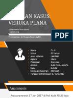 Veruka Plana Copy