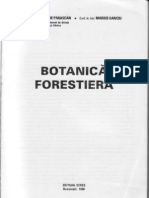 botanica forestiera