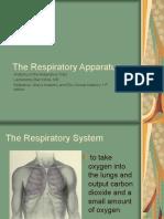 The Respiratory Tract