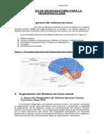 Elementos de Neuroanatomía Para La Neuropsicología (1)