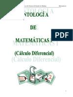 Manual de MatemáticasI_fin