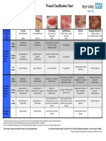 Wound Classification Chart 141