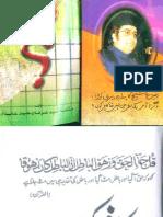 Allama Irfan Haider Abidi - Kafir Kaun.pdf