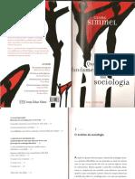 216282038-Simmel-Questoes-Fundamentais-Da-Sociologia.pdf