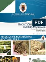 8- Produccion Debiodiesel a Partir de Microalgas