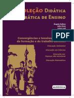 livro_Convergências_tensões_campo.pdf