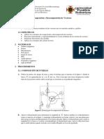Práctica Composición Descomposición Vectores