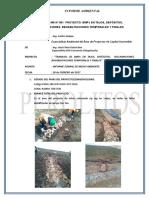 Informe Ambiental 001 - CChaquicocha