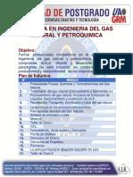 Maestría en Ingenieria Del Gas Natural y Petroquimica