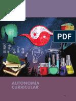 11. AMBITOS_AUTONOMIA_CURRICULAR.pdf