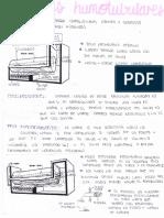 Calderas Humotubulares (1)