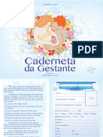 caderneta_gestante.pdf