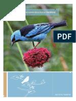 guia_das_aves.pdf