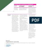 Matemática Organizacion Curricular y Objetivos