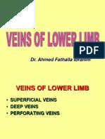 4. Hafizah Binti Mohd Hoshni Musculoskeletal Anatomy Lower Limb Veins and Lymph