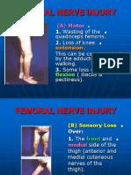 5. Hafizah Binti Mohd Hoshni Anatomy Lower Limb Nerve Injuries