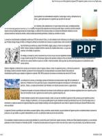 Ingeniería química en mi cerveza.pdf