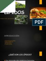 lipidos-160531175244