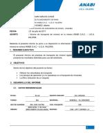 Informe de Transporte de Mineral 21-07-17
