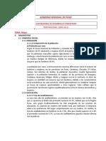 Fichas_Resumen_Politicas_Sector_Puno (1).docx