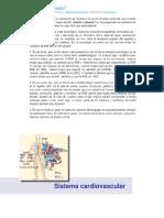 21 Sist Cardiovascular (1)