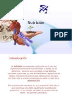 20 nutricion.ppt