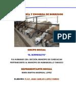 PROYECTO-CRIA-Y-ENGORDA-DE-BORREGOS.docx