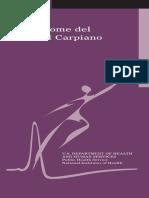 tunel_carpiano_fs.pdf