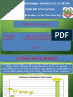 Presentación2.pptx TUBERCULOS