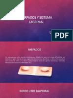 Parpados y Sistema Lagrimal